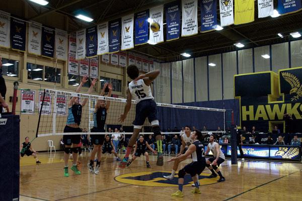 Hawks Men's Volleyball down Bruins in five-set victory