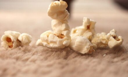 Fallen food still okay  for 5 seconds: study