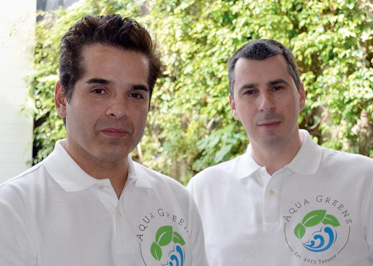 aqua-greens-alvarez-petten