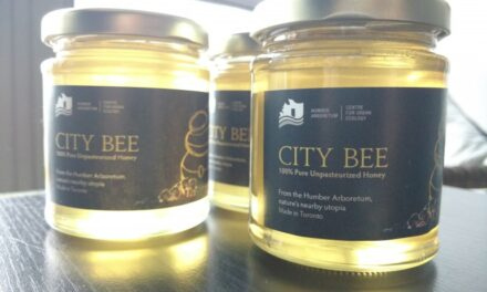 Sustainability honey goes on sale at Humber North