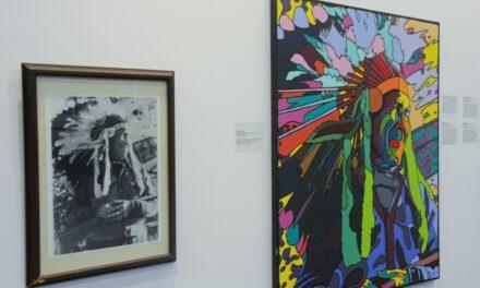 Beedawbun art exhibit showcases indigenous artwork
