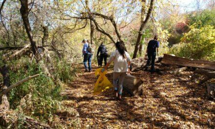 Arboretum cleanup gets just one volunteer – plus reporters