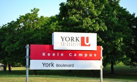 York University issues statement in wake of hate graffiti