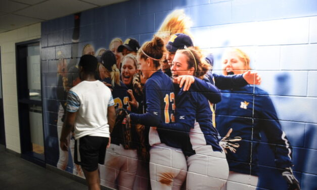 Humber Athletics plans sports mural at Lakeshore