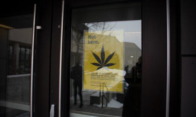 Cannabis on campus: no problem, man