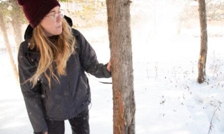 Humber Arboretum hosts wildlife tracking event