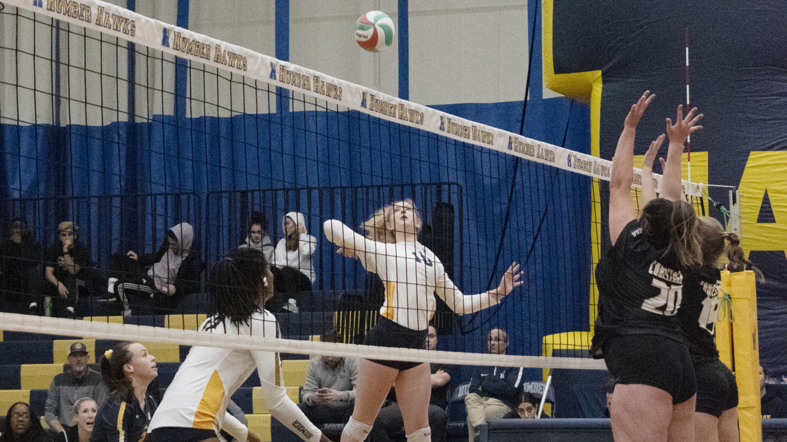 Hawks' women's volleyball didn't stop for holiday break