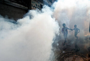 Indian children follow as a municipal corporation worker fumigates the area to prevent mosquitos. This spray is known to have traces of DDT